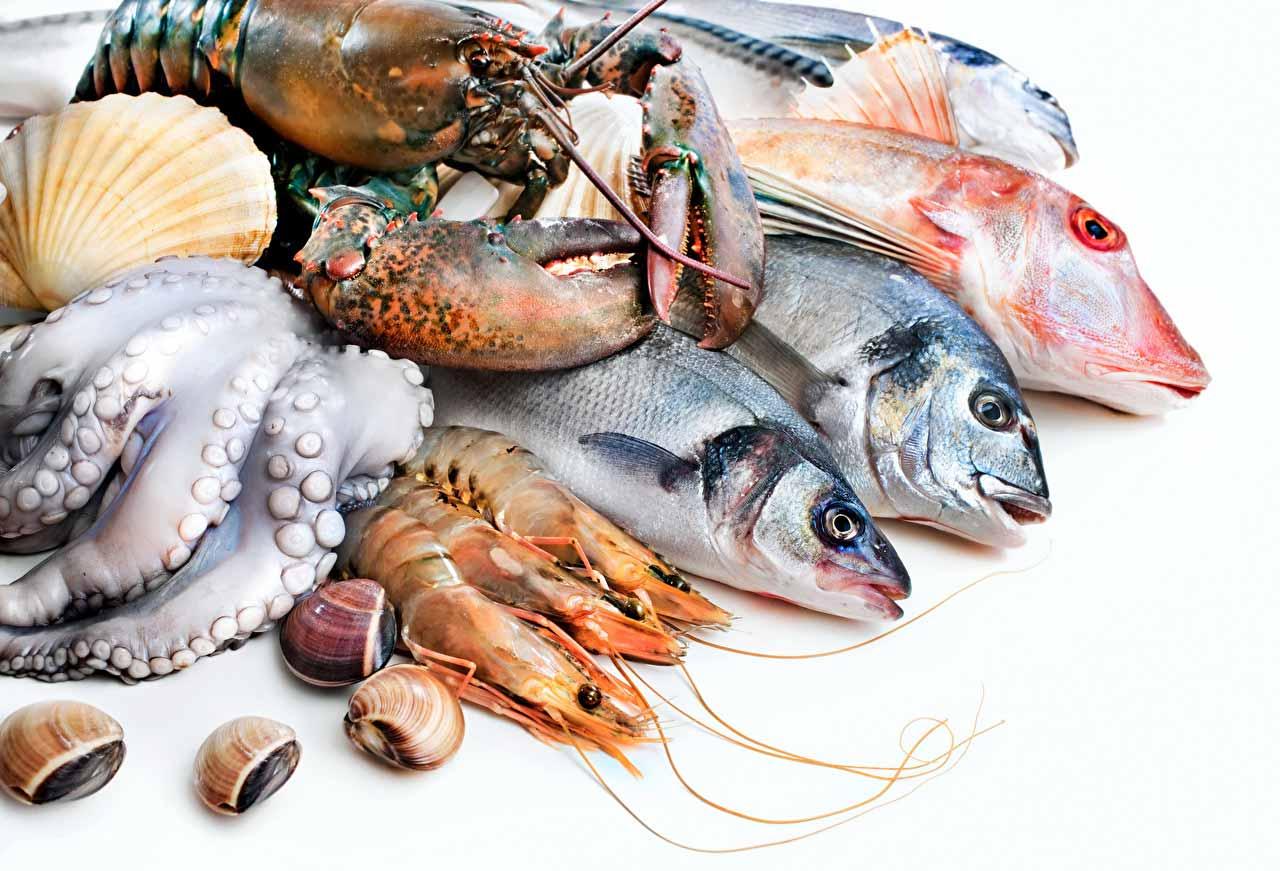 生鮮魚介類